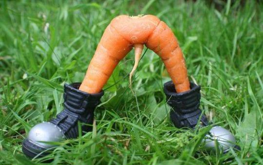 морковка в сапогах