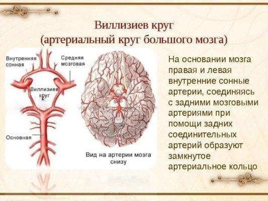 болезнь сосудов головного мозга симптомы