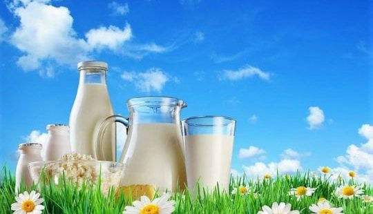 Угадай, какой кисломолочный продукт самый полезный?