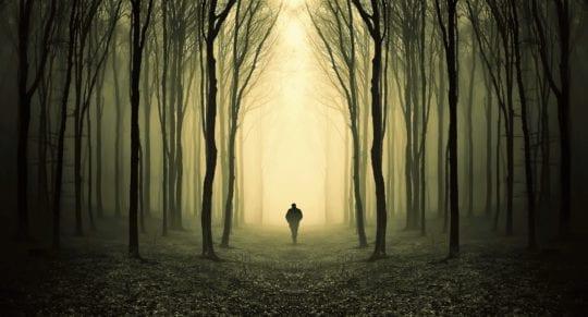 один в лесу