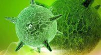 Вирусные заболевания кожи и можно ли заразиться герпесом?