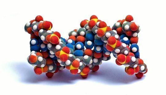 Запоминай в каких продуктах есть белок и питайся полноценно