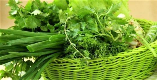 зелень с грядки