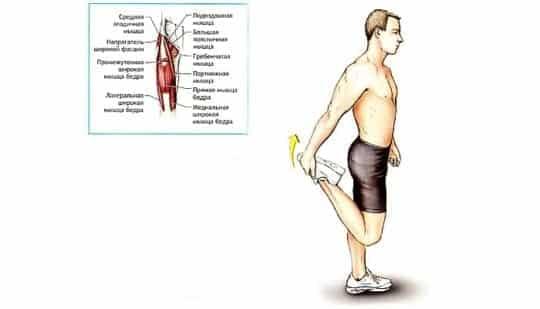 растяжка мышц бедра и голени