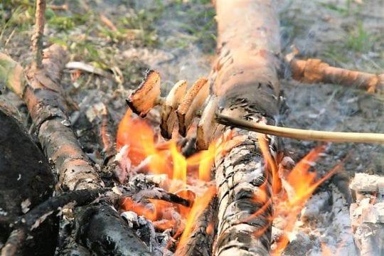 сжигание жира плинометрика