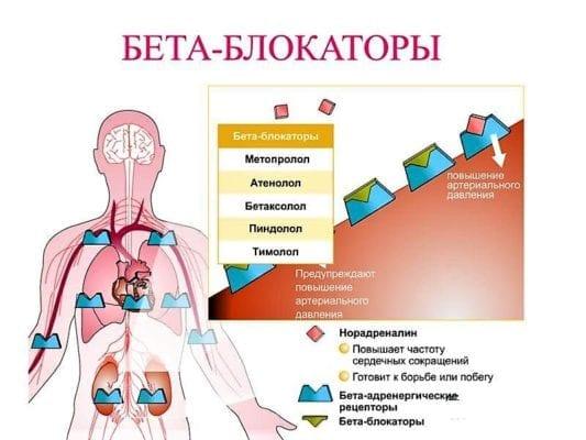 бета-адреноблокаторы