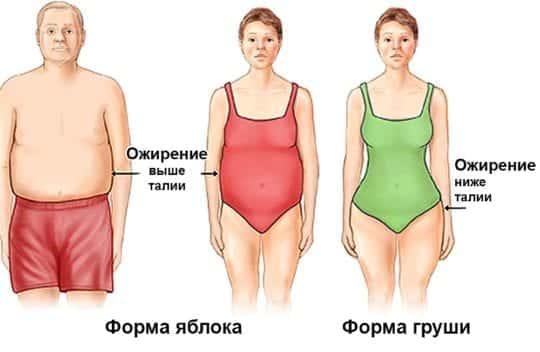 ожирения по абдоминальному типу