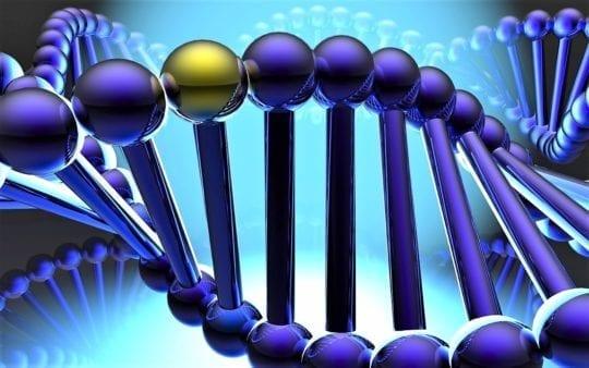 Наследственная гетерогенность