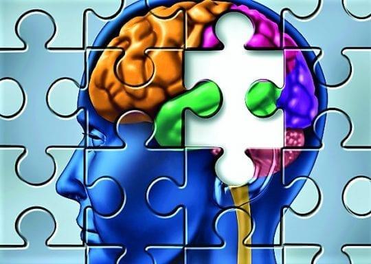 мозг пазлы