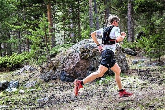 бежит в лесу