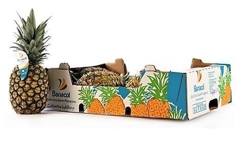 ананас в ящике