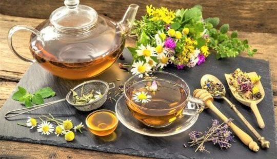 Монастырский чай для похудения: сбор в домашних условиях, отзывы
