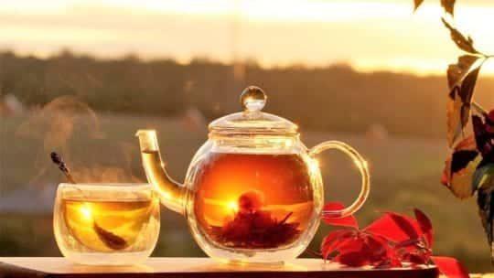 Желудочный чай по монастырскому рецепту: лечебный и элитный?