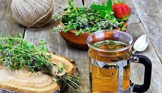 Монастырский чай: правда или развод? Крымский сбор: помогает ли?