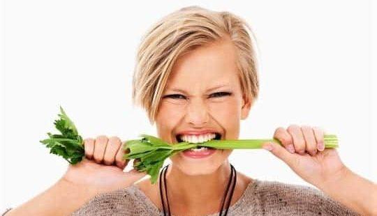 Вегетарианская диета: меню на неделю и интересные факты из Библии