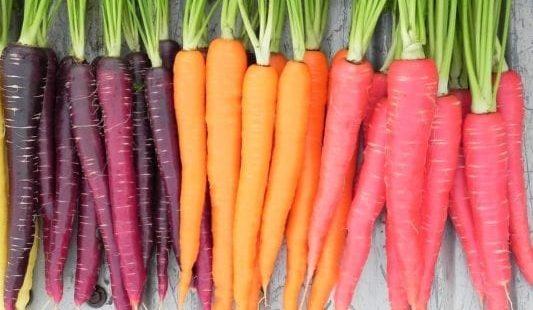 Морковная диета для быстрого похудения: 11 кг за 11 дней, меню на 3 дня