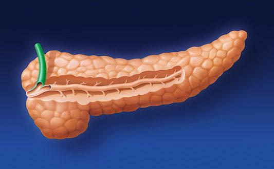 Инсулинорезистентность: как определить и лечить? Воспаление головки поджелудочной железы: что делать?